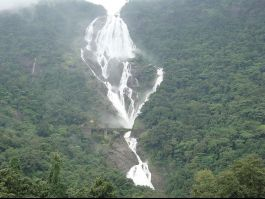 Dudhsagar Waterfalls, Margao